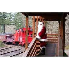 Christmas Tree Train Sun Nov 25